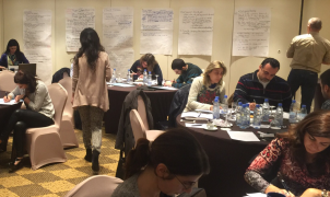 Capacity building on environmental assessment in Lebanon